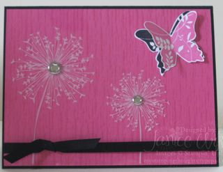 Pink-Passion-with-Butterfly